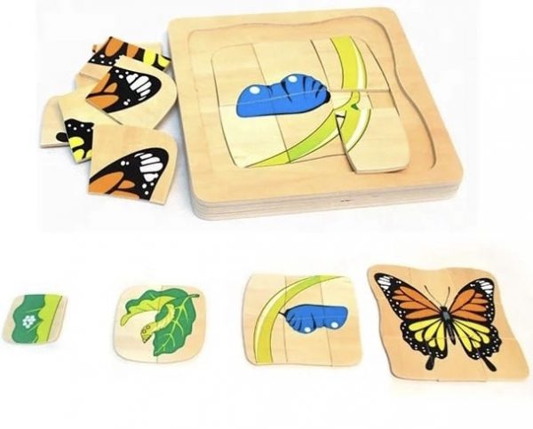 Butterfly Lifecycle Layered Puzzle