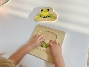 Frog Lifecycle Layered Puzzle