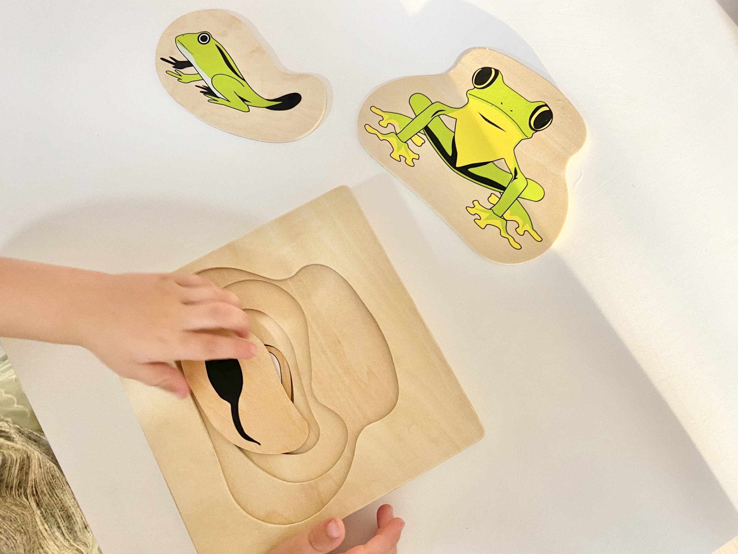 Wooden Baby Toys — A Perfect Companion for Babies in Early Years!